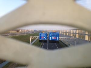 Groene verbinding netkous brug a15 rotterdam
