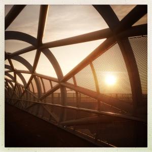 Groene verbinding architectuur brug a15 rotterdam